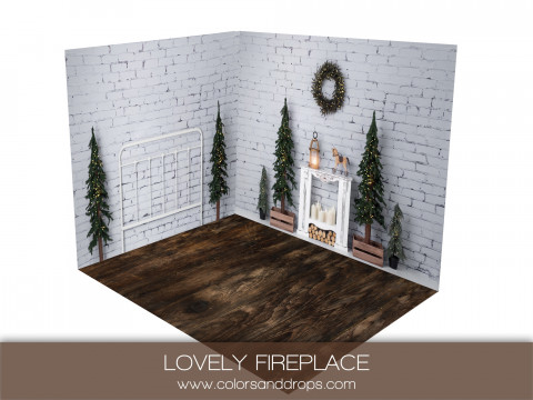 ROOM  - LOVELY FIREPLACE (sol cabries)